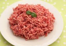 finhackad tät meat förbereder klart till upp Royaltyfri Foto