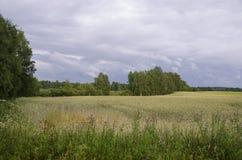 Finish farmland Stock Photography