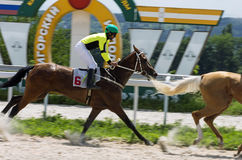 Finish horse race. NPYATIGORSK,RUSSIA - JULY 16,2017:Finish horse race for the traditional prize of the Oktavi - the oldest and the largest racecourses in Russia Royalty Free Stock Photo