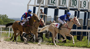 Finish horse race. PYATIGORSK,RUSSIA - JULY 16,2017:Finish horse race for the traditional prize of the Absenta - the oldest and the largest racecourses in Russia Royalty Free Stock Photography