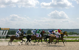 Finish horse race. PYATIGORSK,RUSSIA - JULY 16,2017:Finish horse race for the traditional prize of the Absenta - the oldest and the largest racecourses in Russia Stock Photography