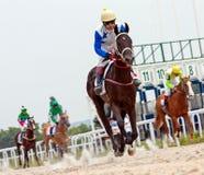 Finish horse racing Stock Photos