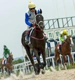 Finish horse racing Royalty Free Stock Photos