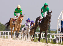 Finish horse racing Stock Photos