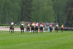 Finish of steeplechase in Lysa nad Labem Royalty Free Stock Images