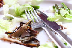 Finished dinner A Stock Images
