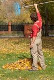 Finished garden raking Royalty Free Stock Images