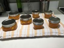 Finished peach jam Stock Photography