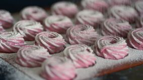 Finished pink marshmallows sprinkled with white sugar powder. stock footage