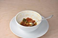 Finished que come el cuenco de sopa de verduras, de cuchara, y de wh calientes del jardín imagenes de archivo