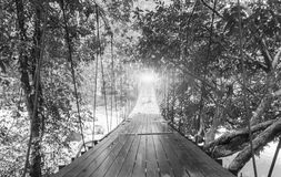 Finishes or Goals Line Concept. Lights at The End of Perspective Hanging Wooden Bridge with Various Type of Fantasy Trees Stock Image