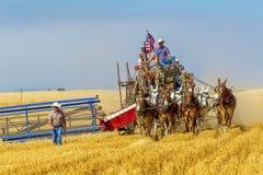Finishing old style harvest. Royalty Free Stock Image