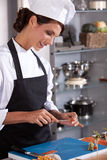 Finishing touch. Young female chef adding the finishing touch to her amuse Stock Photography