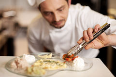 Finishing touches to the yummy meal Stock Image