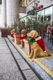 Finja cães em equipamentos do Natal Fotos de Stock Royalty Free