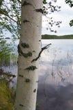 finland Photos stock