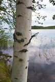finland Fotografie Stock