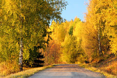 Finland: Autumn colors Royalty Free Stock Photo
