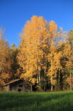 Finland: autumn idyll Royalty Free Stock Photos