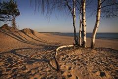 Finland: Beach in Finland Royalty Free Stock Photos