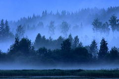 Finland: Blue blue night. Blue foggy summer night in Finland Stock Image