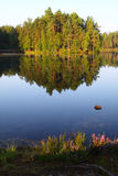 Finland: Calm lake in summer morning Royalty Free Stock Image