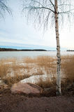 Finland, early spring Royalty Free Stock Image