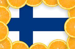 Finland flag in fresh citrus fruit slices frame. Finland flag in frame of orange citrus fruit slices. Concept of growing as well as import and export of citrus vector illustration