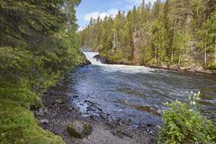 Finland forest and river landscape at Pieni Karhunkierros trail. Stock Images