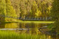 Finland forest at sunset. Pieni karhunkierros trail bridge. Natu. Finland forest at sunset. Pieni karhunkierros trail. Nature background. Horizontal Royalty Free Stock Photography