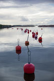Finland, Hanko, Sunset, Red buoys in the bay Royalty Free Stock Image