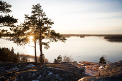 Finland, Helsinki, late autumn. Baltic sea, bay. Still water of the gulf, islands with forests. Low winter sun, dusk, pine trees on rock. Scenic peaceful Stock Photos