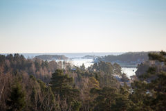 Finland, Helsinki, late autumn. Baltic sea, bay. Still water of the gulf, islands with forests. Low winter sun, dusk, pine trees on rock. Scenic peaceful Stock Photo