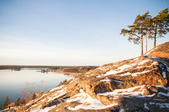 Finland, Helsinki, late autumn. Baltic sea, bay. Still water of the gulf, islands with forests. Low winter sun, dusk, pine trees on rock. Scenic peaceful Royalty Free Stock Photo