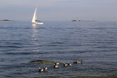 Finland: Sailing in Baltic Sea Stock Photos