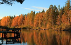 Finland, Savonia: Autumn Wood and Lake with Old Dock in Evening Sun Royalty Free Stock Image