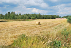 Finland in summer Stock Photos