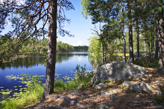 Finland: Summer day by a lake. Bright hot summer day by a lake in a national park in southern Finland Royalty Free Stock Image