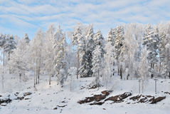 Finlandia. Barranca Imatrankoski en invierno Fotos de archivo libres de regalías