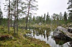 Finlandia bonito Fotos de Stock Royalty Free