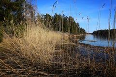 Finlandia: Costa do mar Báltico Foto de Stock Royalty Free