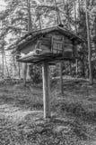 Finlandssvensk lagring för björnprovexemplarmat arkivbilder