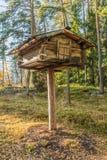 Finlandssvensk lagring för björnprovexemplarmat arkivbild