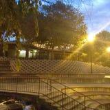 Finlay Park, Dämmerung am Café Lizenzfreies Stockbild