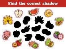 Finna den korrekta skuggan (frukter) vektor illustrationer