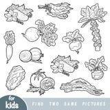 Finna två de samma bilderna, utbildningsleken för barn ställ in grönsaker stock illustrationer