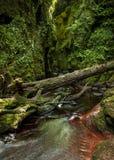 Finnach幽谷,恶魔讲坛 苏格兰 英国 免版税库存照片