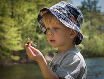 Finner den undersökande naturen för pojken en slända Arkivfoton