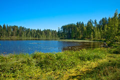 Finnische Landschaft Lizenzfreie Stockbilder