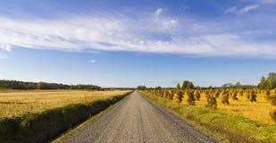 Finnische Landschaft Lizenzfreies Stockbild